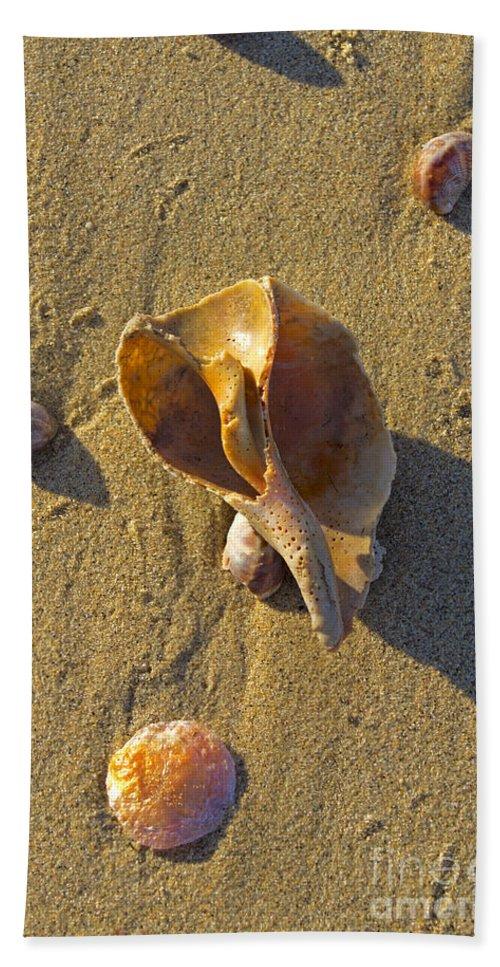 Shell Bath Sheet featuring the photograph Winter Beach by Joe Geraci