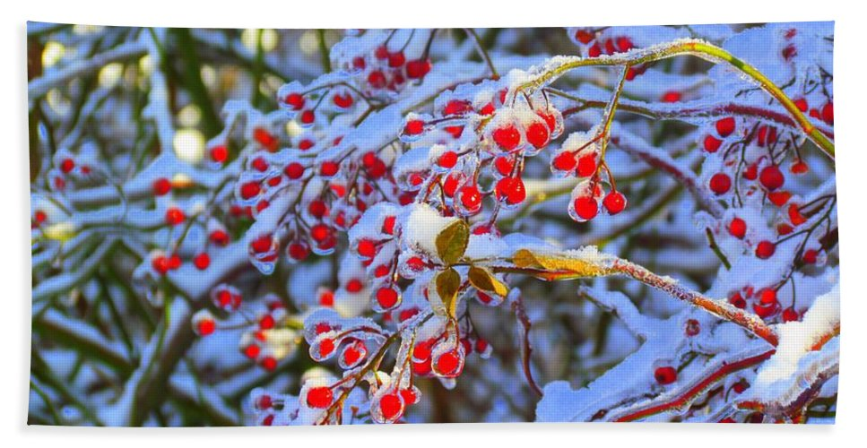 Red Berries Hand Towel featuring the photograph Winter Berries by Elizabeth Dow