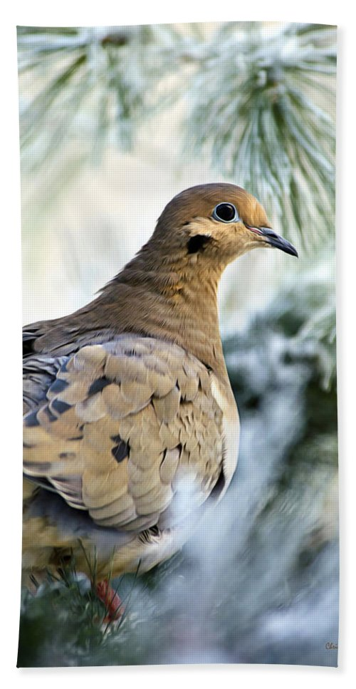 Dove Bath Towel featuring the photograph Winter Bird Mourning Dove by Christina Rollo