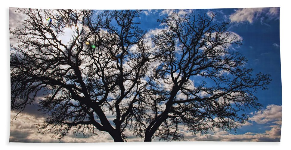 Landscape Hand Towel featuring the photograph Winter Blue Skys by Bill Dodsworth