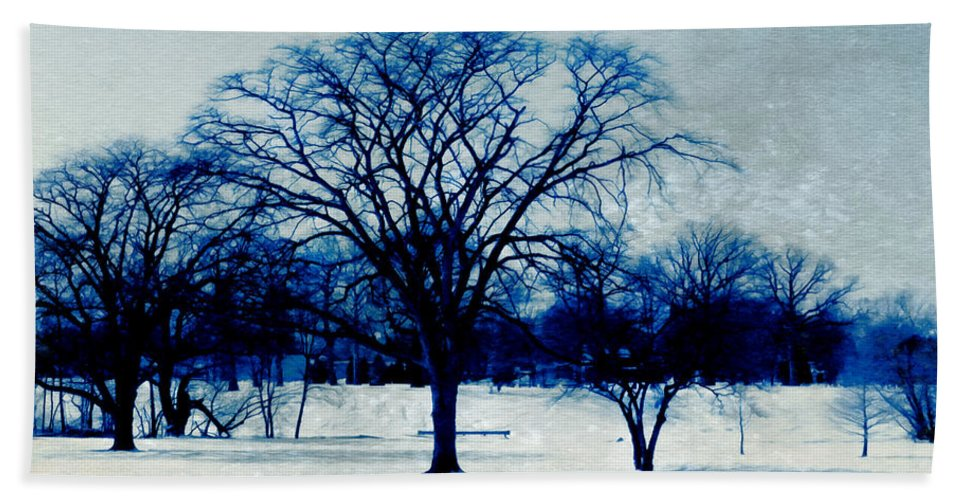 Blue And White Hand Towel featuring the photograph Winter Blues by Shawna Rowe