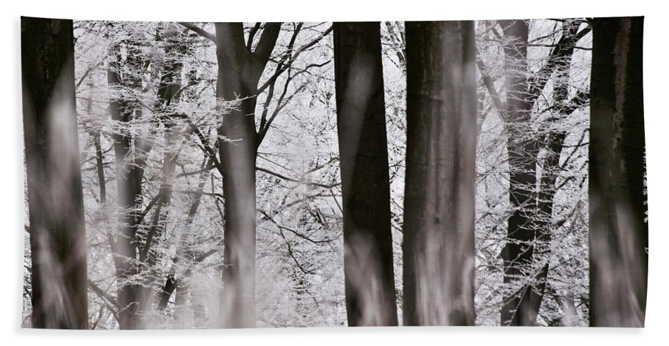 Heiko Bath Sheet featuring the photograph Winter Forest 1 by Heiko Koehrer-Wagner