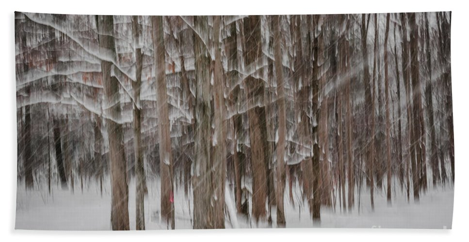 Abstract Hand Towel featuring the photograph Winter Forest Abstract II by Elena Elisseeva