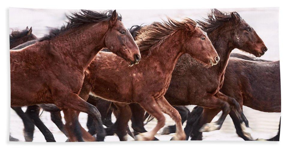 Winter Hardened Wild Horses Bath Sheet featuring the photograph Winter Hardened Wild Horses by Wes and Dotty Weber
