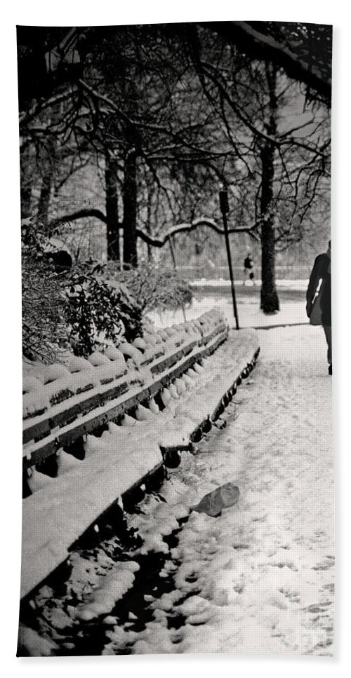 Winter Bath Sheet featuring the photograph Winter In Central Park by Madeline Ellis