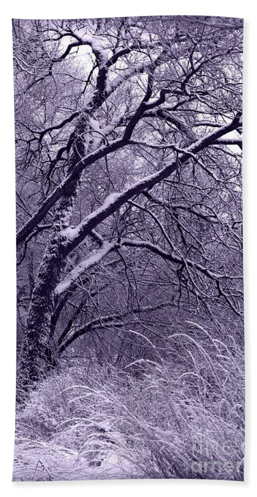 Winter Hand Towel featuring the photograph Winter In Purple by Carol Groenen