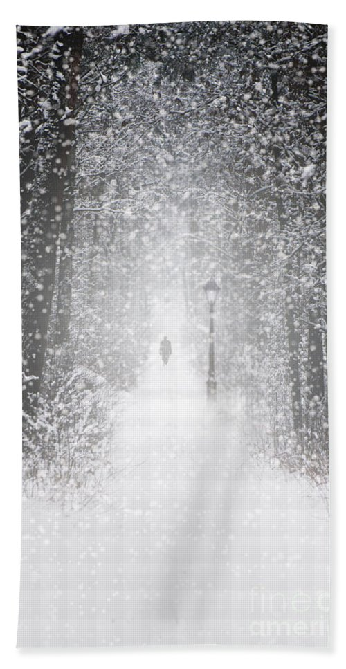 Landscape Hand Towel featuring the photograph Snowing In The Forrest by Jaroslaw Blaminsky