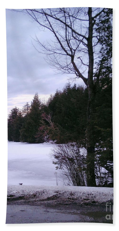 Winter Hand Towel featuring the photograph Winter In Vermont by Christy Gendalia
