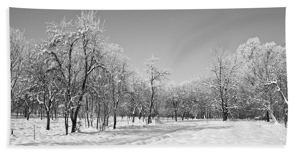 Beautiful Bath Sheet featuring the photograph Winter Landscape In Bw by Dan Radi