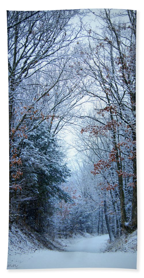 Snow Hand Towel featuring the photograph Winter Lane by Cricket Hackmann