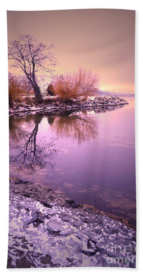Winter Bath Sheet featuring the photograph Winter Light Reflected by Tara Turner