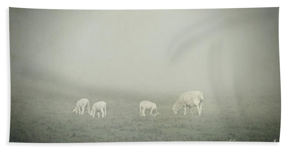 Winter Hand Towel featuring the photograph Winter Morning Londrigan 3 by Linda Lees