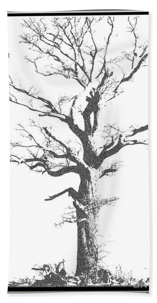 Nature Bath Sheet featuring the photograph Winter Oak Art by Debbie Portwood