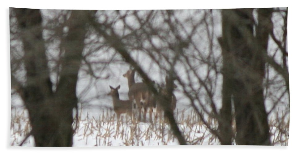 Deer Family Bath Sheet featuring the photograph Winter Family Pause by Neal Eslinger