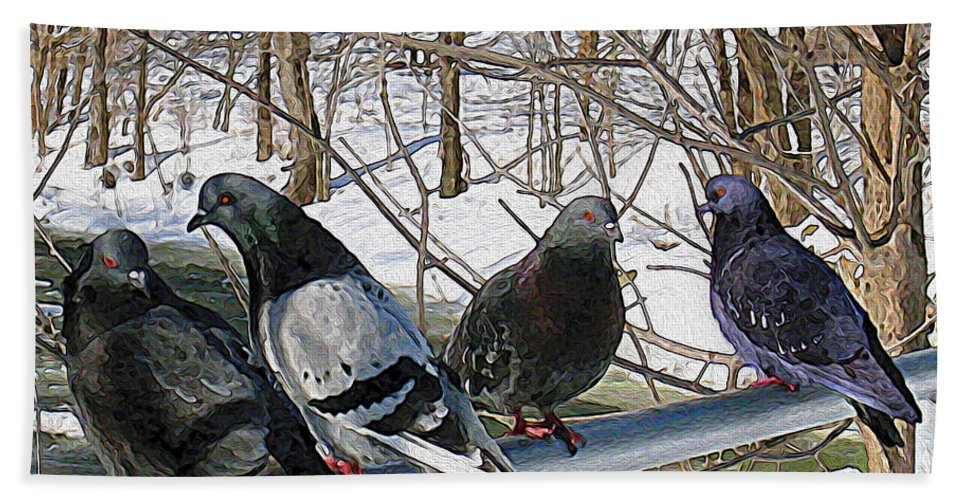 Birds Hand Towel featuring the photograph Winter Pigeon Party by Nina Silver