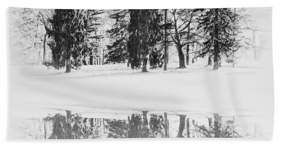 Winter Pines Hand Towel featuring the photograph Winter Pines by Bill Cannon