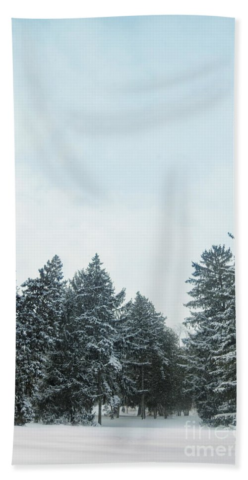 Winter; Cold; Snow; Clouds; Sky; Blue; White; Trees; Pine Trees; Pines; Fir; Covered; Beautiful; Lovely; Pretty; Scenic; Snowfall; Nature; Landscape Bath Sheet featuring the photograph Winter Pines by Margie Hurwich