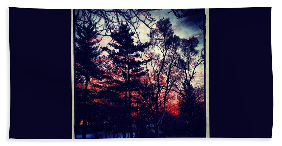 Winter Red Sky Trees Pine Branches Blue Black Snow Nature Izaak Walton Preserve Homewood Illinois Chicago Clouds Landscape Color Squareforemat Square Frankjcasella Art Fineart Photography Iphone Ipad Android Greeting Card Print Poster Bath Towel featuring the photograph Winter Red by Frank J Casella