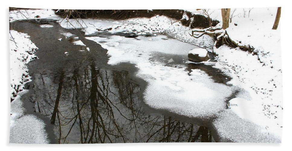 Winter Bath Sheet featuring the photograph Winter Reflections by Laurel Talabere