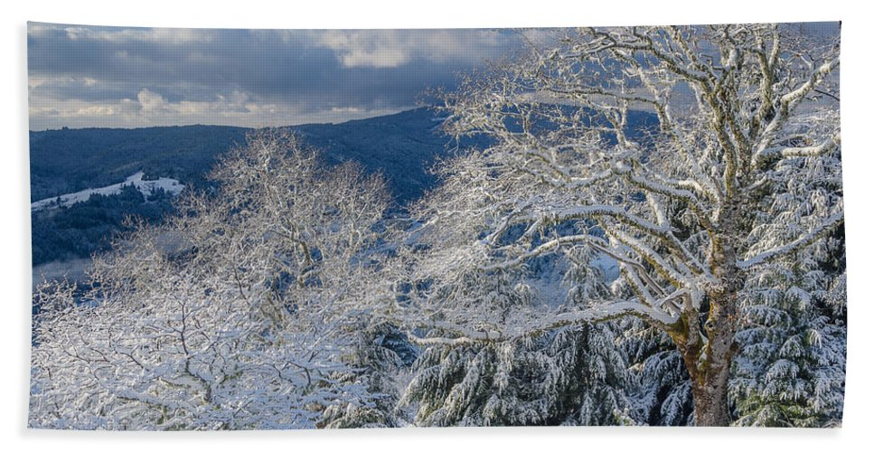 Dramatic Sky Hand Towel featuring the photograph Winter Scene At Berry Summit by Greg Nyquist