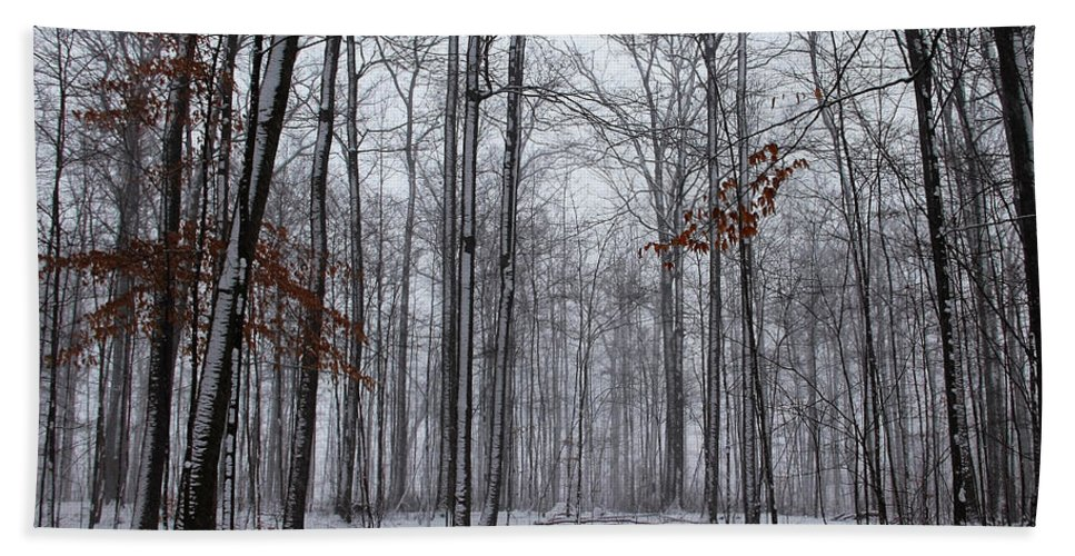 Hilton Conservation Park Hand Towel featuring the photograph Winter Storm In The Forest by Debbie Oppermann