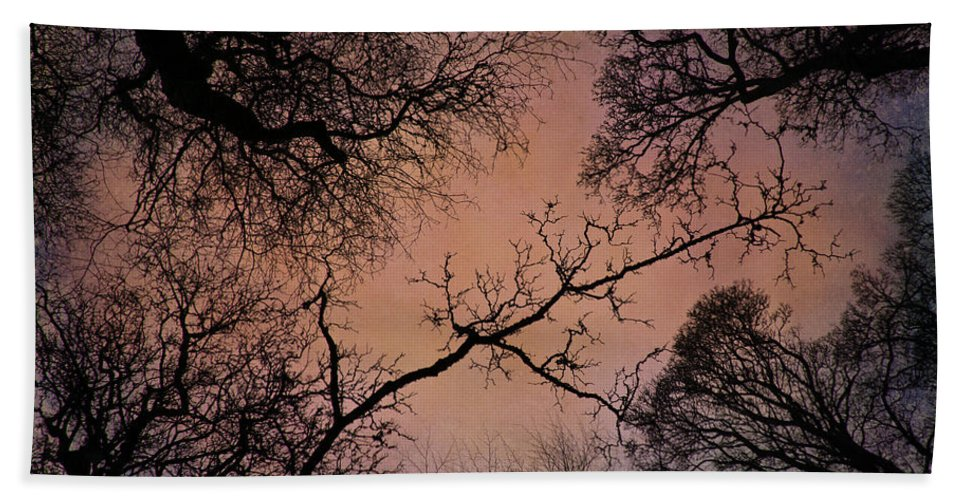 Leaves Hand Towel featuring the photograph Winter Tree Canopy by David Pringle