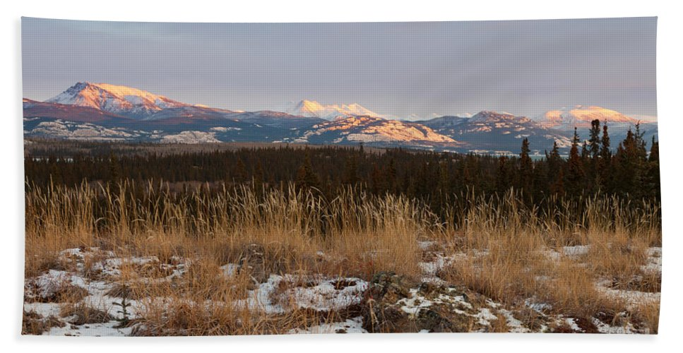 Arctic Hand Towel featuring the photograph Winter Wilderness Landscape Yukon Territory Canada by Stephan Pietzko
