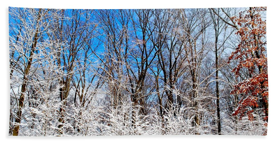Winter Hand Towel featuring the photograph Winter Wonderland by Frozen in Time Fine Art Photography