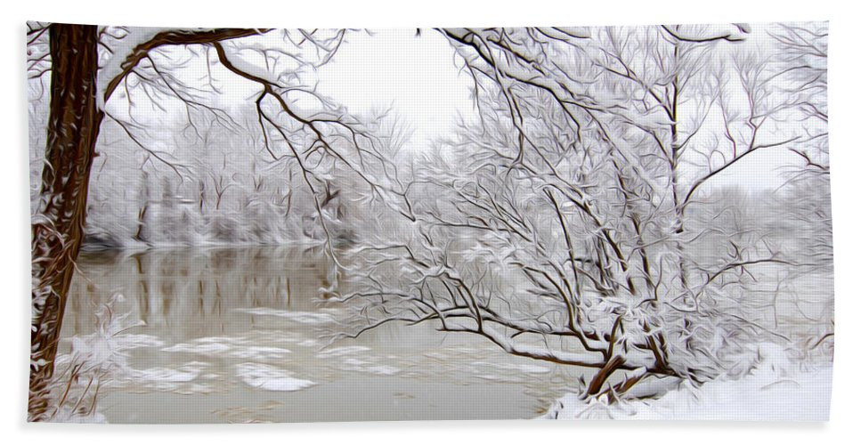 Snow Hand Towel featuring the photograph Winter Wonderland by Tracy Winter