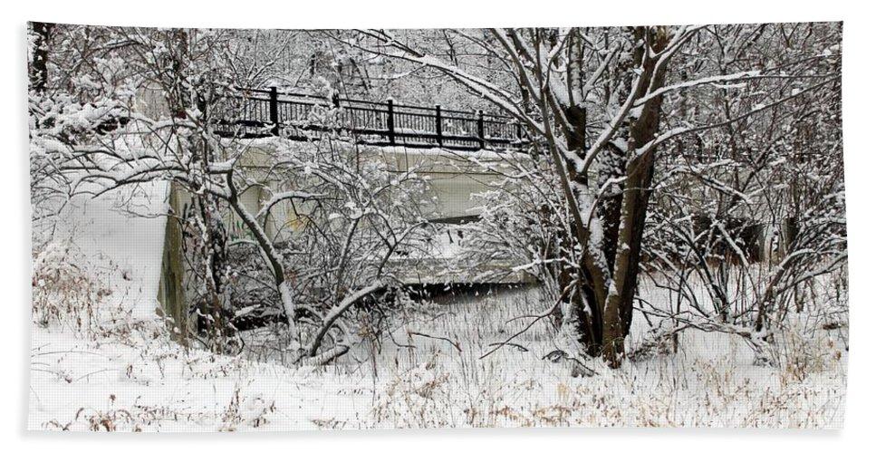 Winter Hand Towel featuring the photograph Winter Wonderland by Wendy Gertz