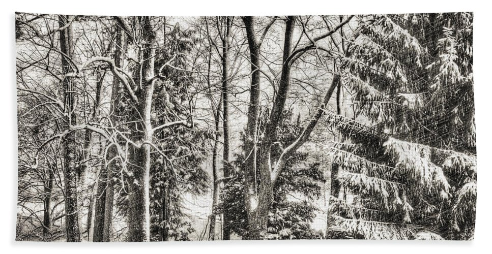 Bavaria Bath Sheet featuring the photograph Winter Zauber 03 by Edmund Nagele
