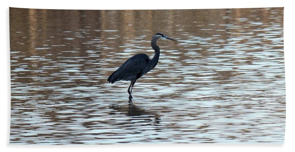 Winter's Blue Heron Hand Towel featuring the photograph Winter's Blue Heron by Maria Urso
