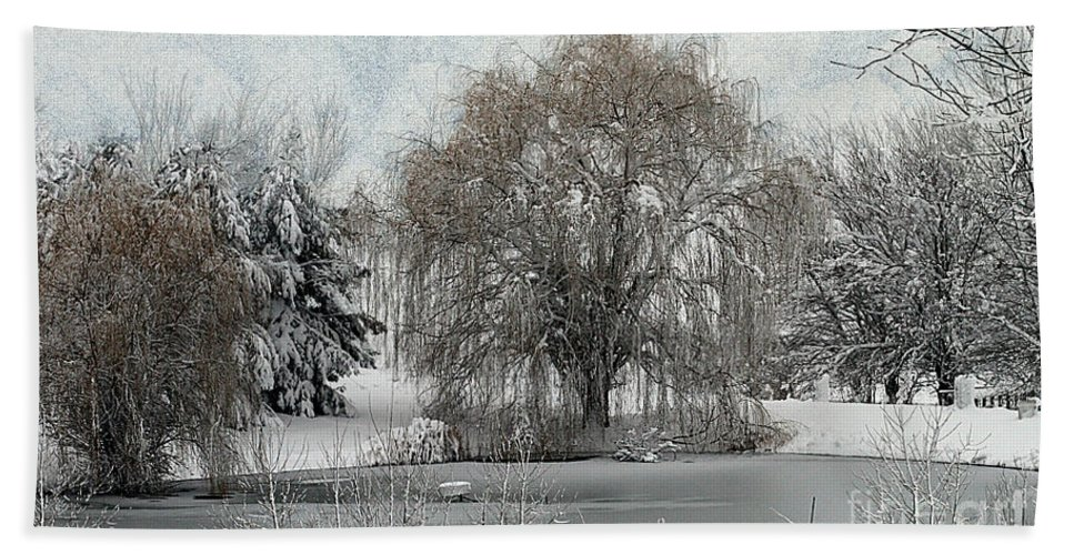 Winter Hand Towel featuring the photograph Winter's Storm by Elizabeth Winter