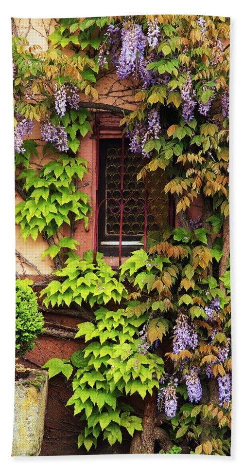 Wisteria Hand Towel featuring the photograph Wisteria On A Home In Zellenberg France 3 by Greg Matchick