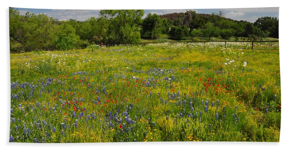 Wildflowers Bath Towel featuring the photograph Wonder-filled Meadows by Lynn Bauer