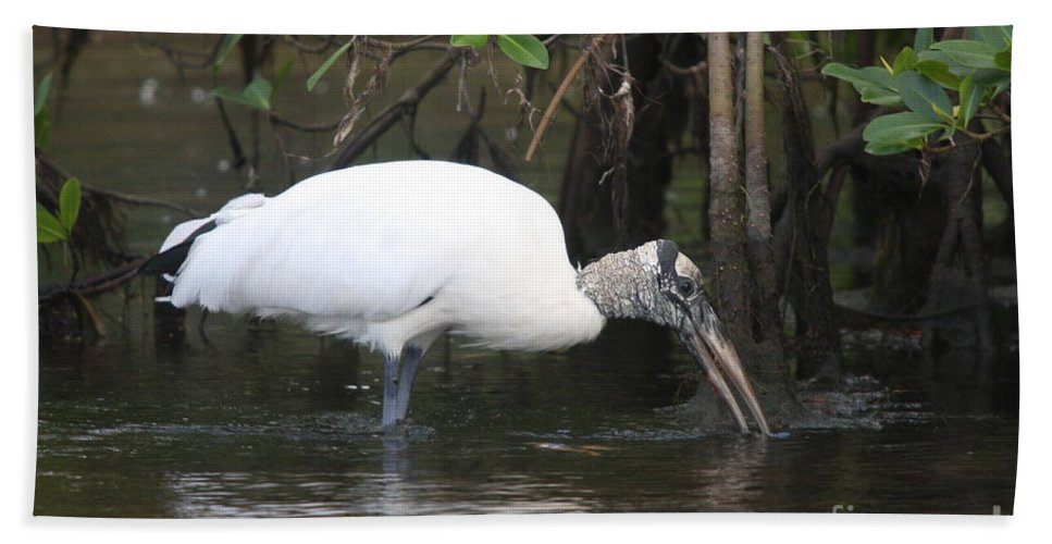 Wood Stork Hand Towel featuring the photograph Wood Stork In The Swamp by Christiane Schulze Art And Photography