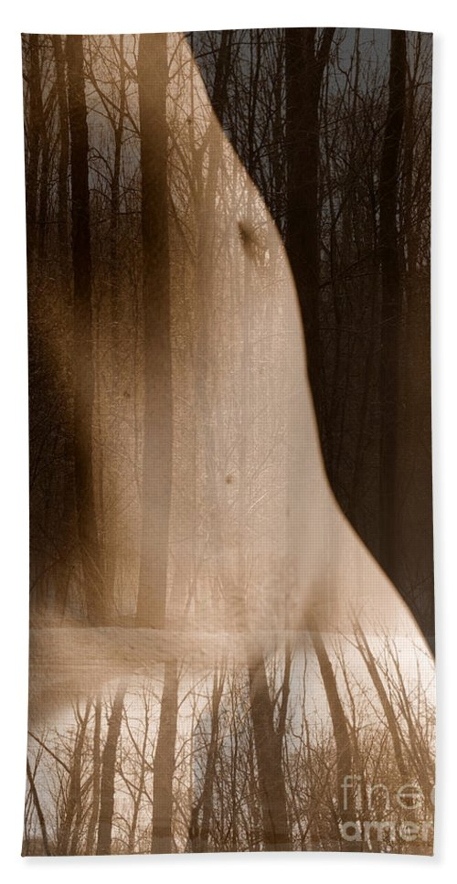 Nudes Hand Towel featuring the photograph Wooded Belly by Trish Hale