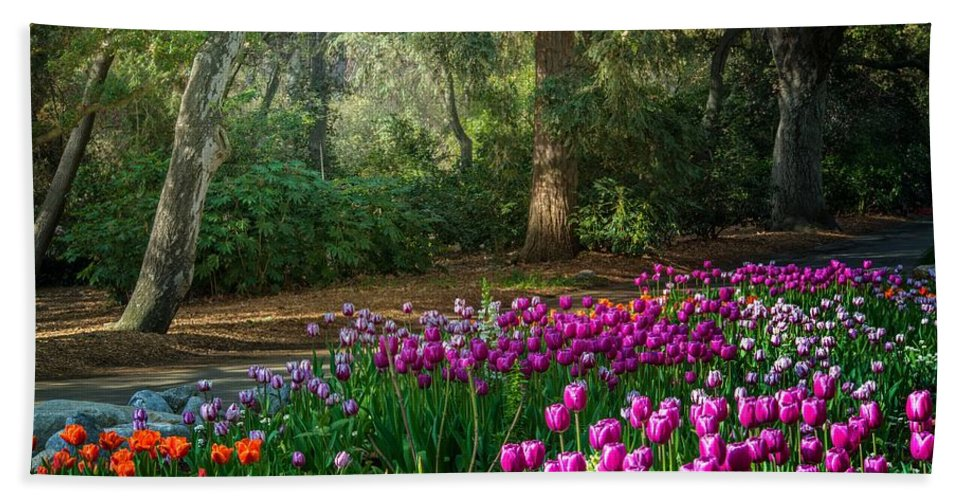 Tulip Bath Towel featuring the photograph Wooded Bliss by Lynn Bauer