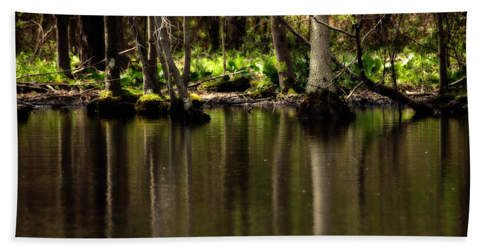 Landscape Bath Sheet featuring the photograph Wooded Reflection by Karol Livote