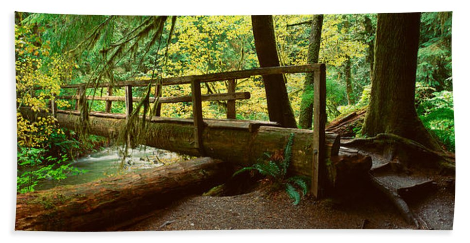 Photography Hand Towel featuring the photograph Wooden Bridge In The Hoh Rainforest by Panoramic Images