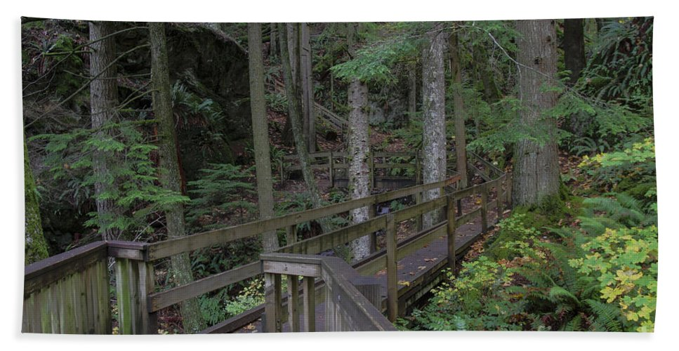 Landscape Bath Sheet featuring the photograph Wooden Forest Trail by Darleen Stry