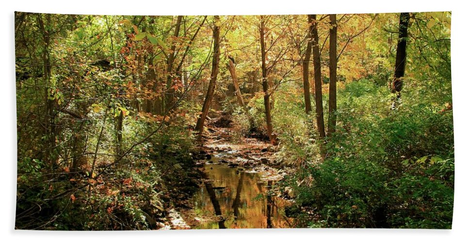 Woodland Brook Hand Towel featuring the photograph Woodland Brook by Robert McCulloch