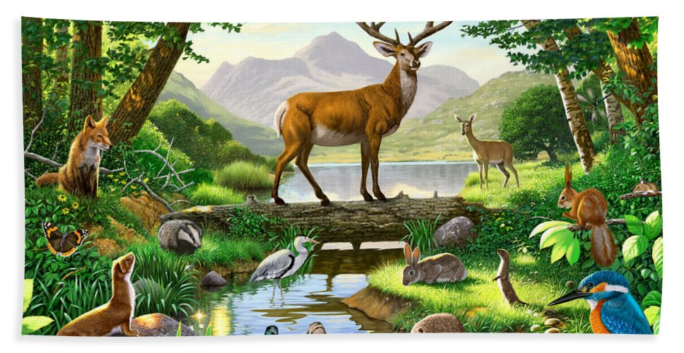 Animal Bath Towel featuring the photograph Woodland Harmony by MGL Meiklejohn Graphics Licensing