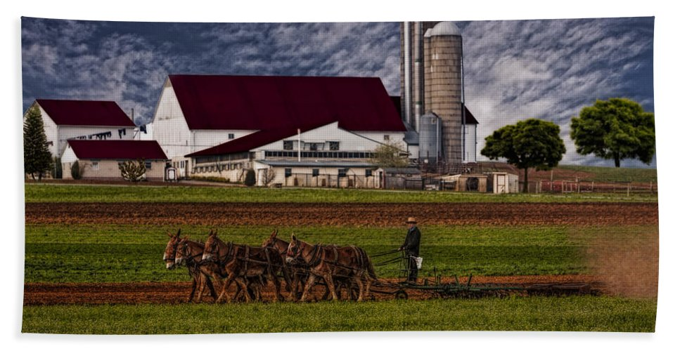 Amish Hand Towel featuring the photograph Working The Fields by Susan Candelario