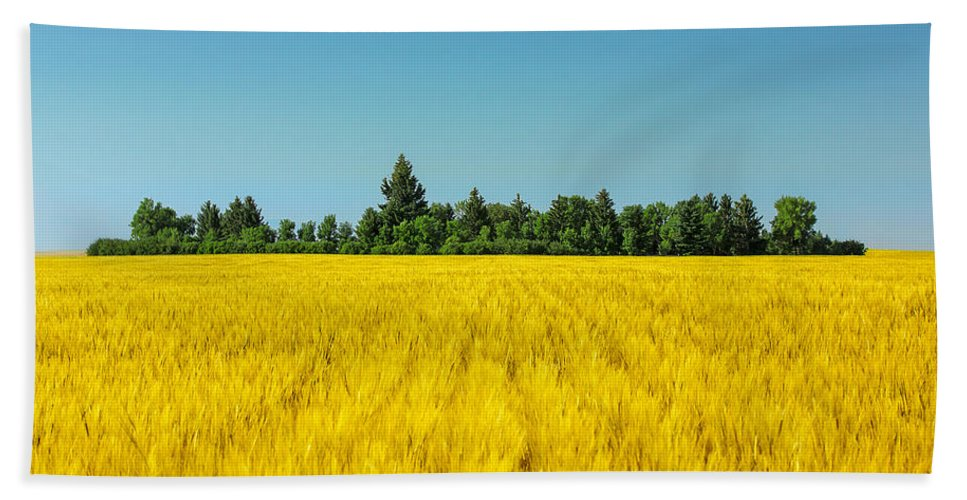 Field Hand Towel featuring the photograph Yellow And Blue Make Green by Todd Klassy