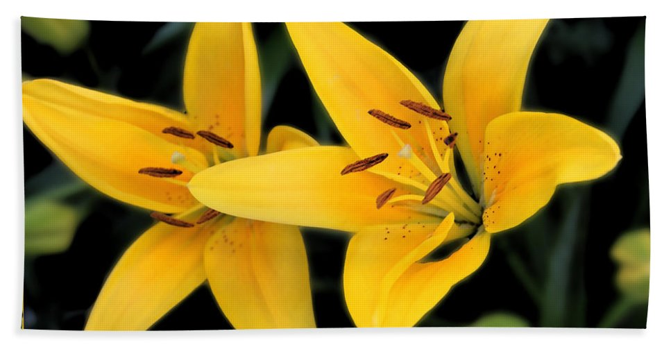 Colorado Bath Sheet featuring the photograph Yellow Beauties by Bob Hislop