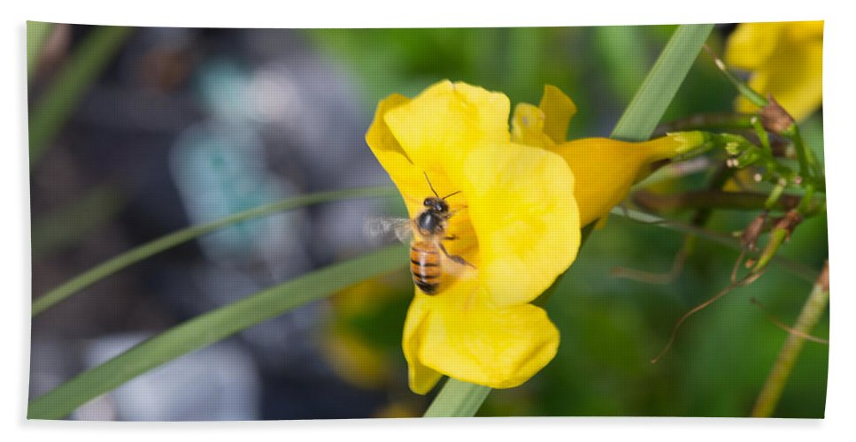 Texas Bath Sheet featuring the photograph Yellow Bell Flower With Honeybee by JG Thompson