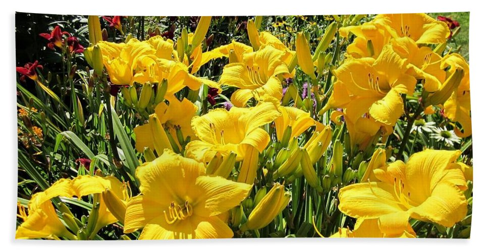 Buttered Popcorn Hand Towel featuring the photograph Yellow Daylilies by MTBobbins Photography