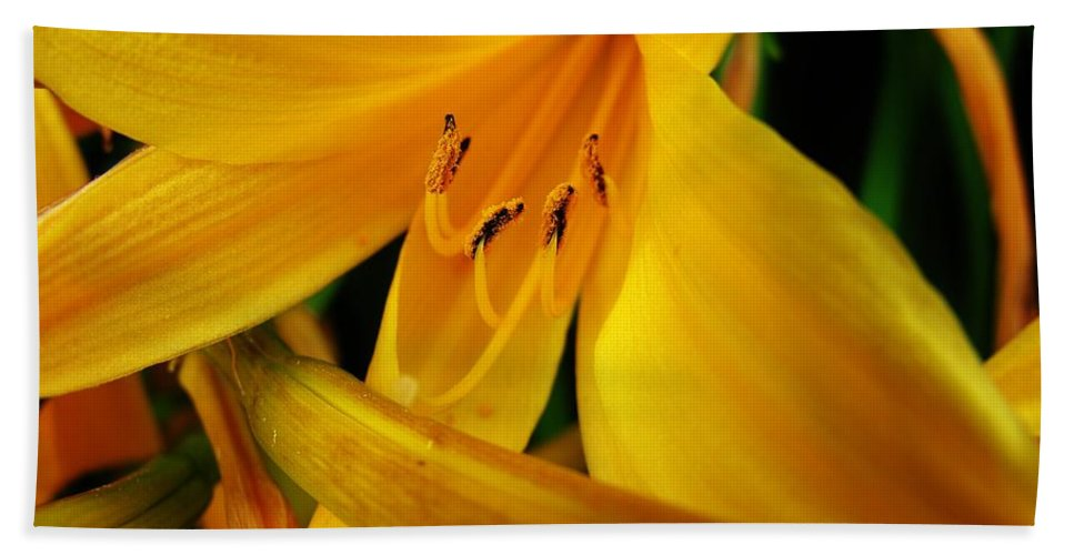 Flower Hand Towel featuring the photograph Yellow Flower by Sherman Perry