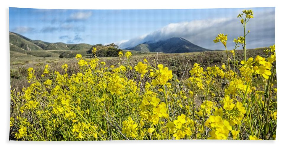 Flowers Hand Towel featuring the photograph Yellow Foreground by Timothy Hacker